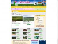 mtfazendas.com.br