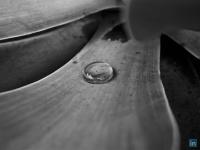 netsenior.com.br