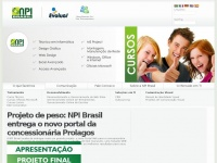 npibrasil.com.br