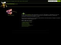 orquideana.com.br
