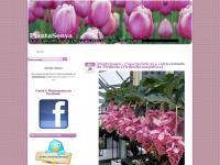plantasonya.com.br