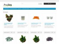 projseg.com.br