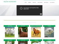 Racoesfazendeiro.com.br
