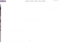 radixeng.com.br