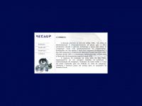 Recaup.com.br - Recaup - Comercio e Recuperação de Auto Peças Ltda