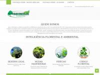 Reflorestar.com.br - Mudas de Guanandi e Mudas de Mogno Africano, Consultoria Ambiental, Novo Código Florestal - Vasconcelos Florestal