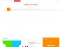reidacocadapreta.com.br