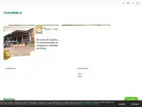 revistacanavieiros.com.br