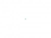 sanerg.com.br