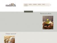 grupofarroupilha.com