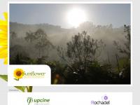 sfs.com.br