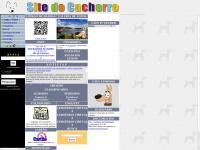 sitedocachorro.com.br