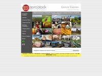 terrastock.com.br