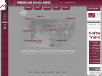Timberlake.com.br - Timberlake Consultants | Software | Training | Consultancy