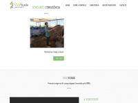 videverde.com.br