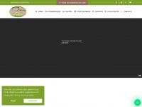 viladaserra.com.br