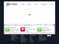 virgos.com.br