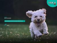 vitalcan.com.br