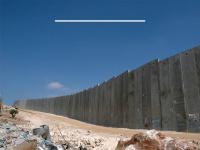 vivapalestina.com.br