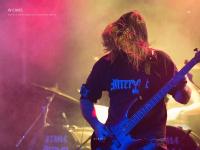 wcams.com.br