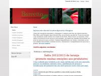 barrettocap.com.br