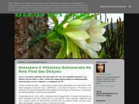 blogdaelisrn.blogspot.com