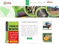 rpaconsultoria.com.br