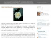 nadacontraoverso.blogspot.com