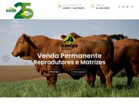 koelpe.com.br