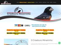 Criadouromineirinho.com.br - Criadouro Mineirinho - Dimas - Curió Praia Clássico - Pouso Alegre/MG