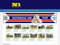 n1cavalos.com.br