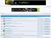brasilreef.com