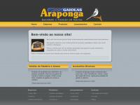 gaiolasaraponga.com.br