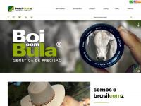 brasilcomz.com