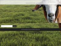 apendcity.com