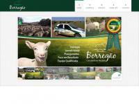 borregao.com.br