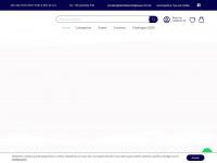 raiodeluzreligiosos.com.br