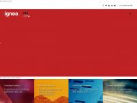 ignea.com.br