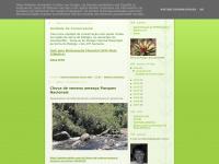 serradorelogio.com