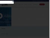 ilae.com.br