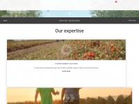 timacagro.com