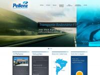 pellenz.com.br