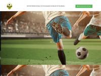 bolaovip.com.br