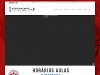 kyokushin.com.br