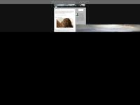 blogdowaka.blogspot.com