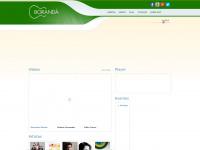 boranda.com.br