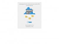 brasgeo.com.br