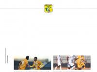 brasiliensefc.com.br