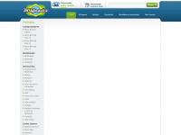brinformaticanet.com.br