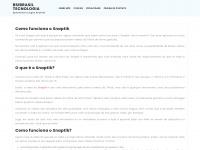 bsibrasil.com.br